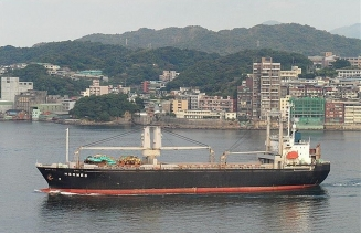 8951 dwt RORO-General cargo ship for sale
